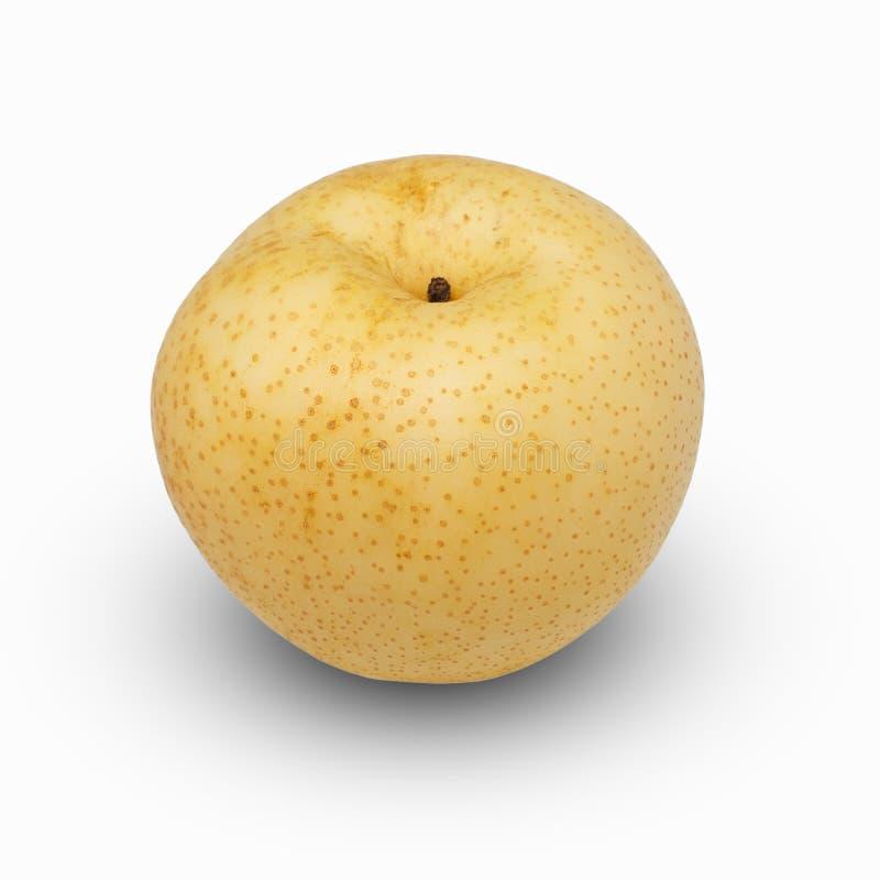 Päron - asiatiska päron som isoleras på vit bakgrund royaltyfria bilder