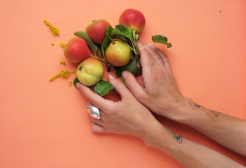 Päronen med en hand på den peachy lägenheten royaltyfri bild