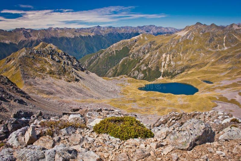 På överkanten av Parachute utkik i den Nelson Lakes nationalparken i NZ royaltyfri fotografi