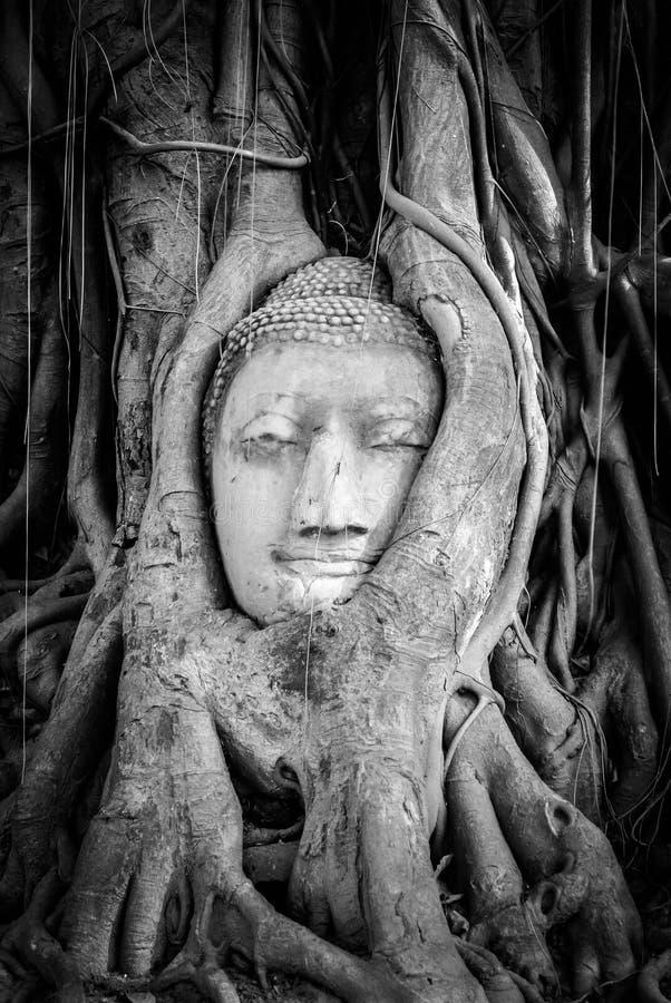 på Ayutthaya, arkivbilder