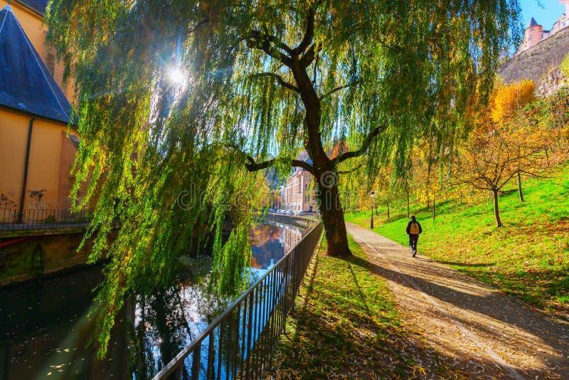 På den Alzette floden i den Luxembourg staden royaltyfri foto