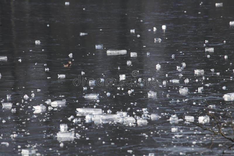 Is på en isbunden sjö royaltyfria bilder