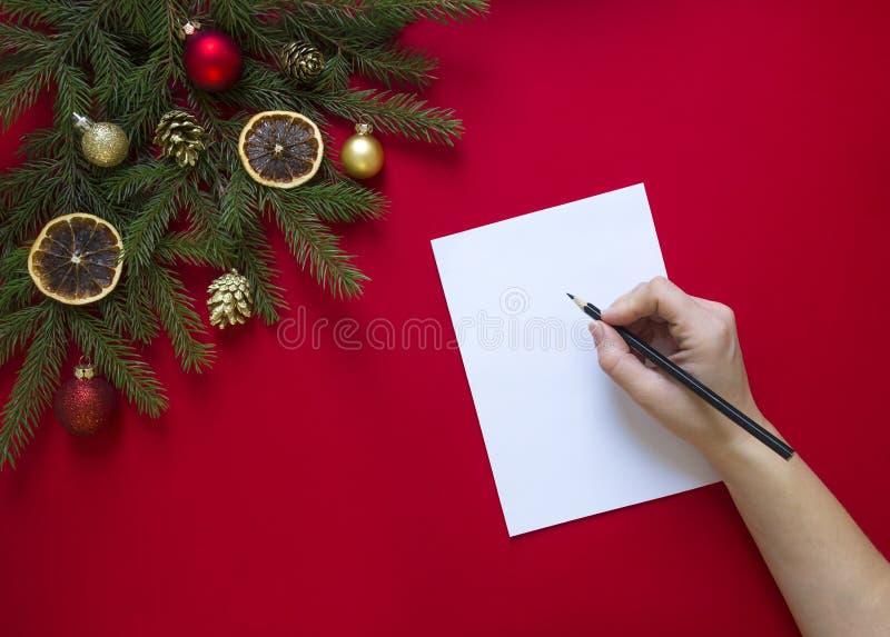 På en röd bakgrund rymmer en grön granfilial som dekoreras med julpepparkakan, guld- kottar, apelsiner och bollar en hand, en sva royaltyfria bilder
