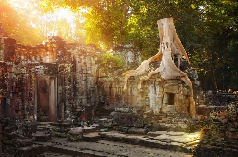 På fördärvar av det Preah Khan tempelkomplexet i Cambodja. arkivfoto