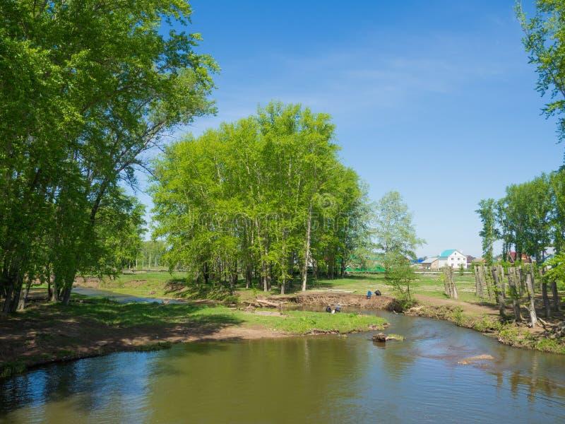 På floden royaltyfri bild