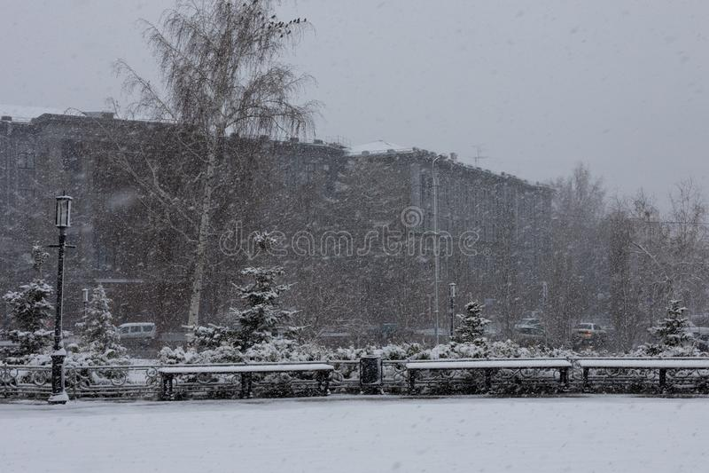 På gatan i en stad parkera den snöar i försommar Onormalt v?der Mulet snöig, kallt arkivfoton