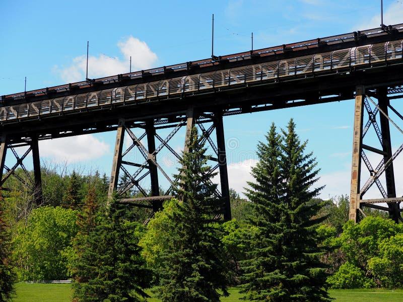 På hög nivå bro i Edmpnton Alberta arkivbilder