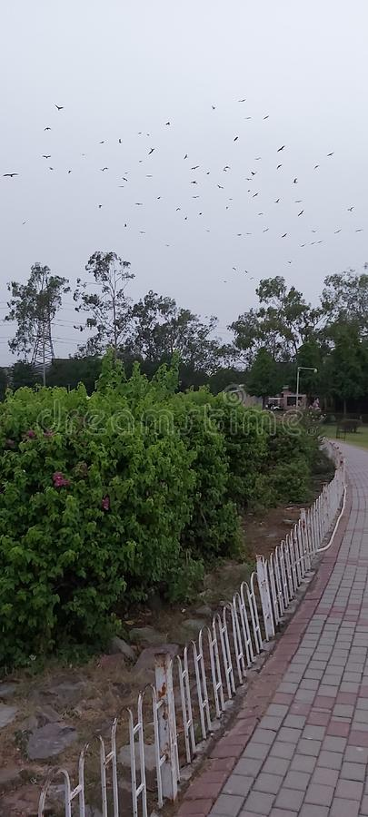 På kvällen vid Gulshan Iqbal Park Lahore Pakistan royaltyfria foton