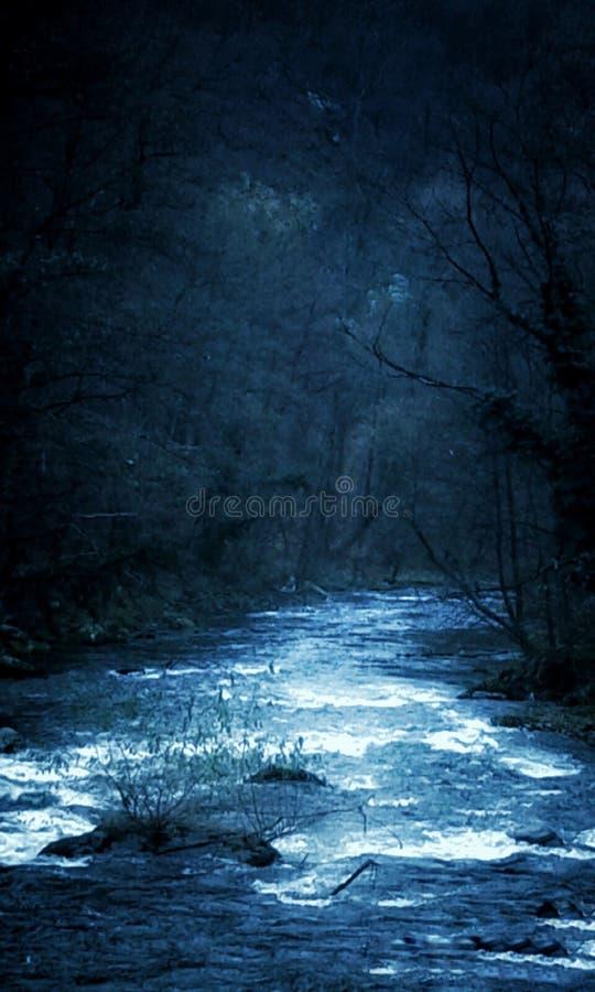 På natten på den Cerna floden Baile Herculane, Rumänien arkivfoton