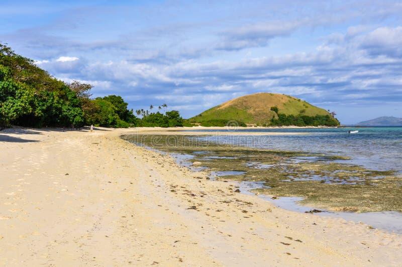 På stranden i Mana Island Fiji arkivbild