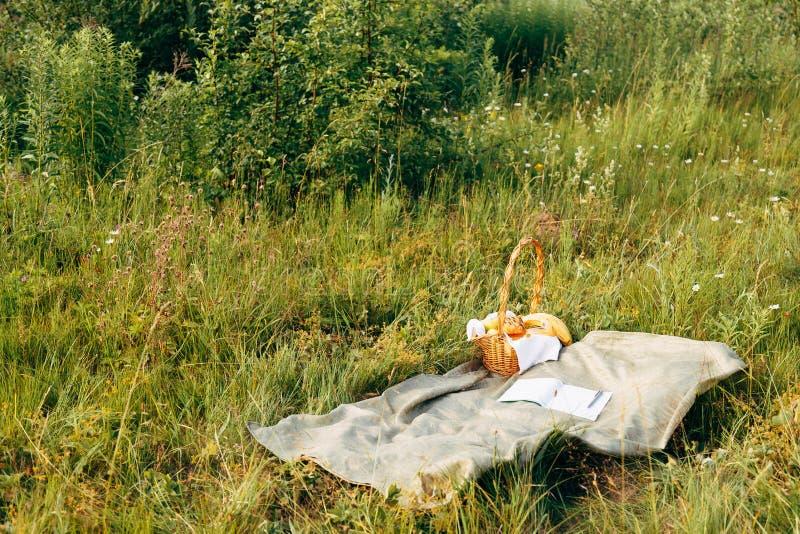 På våren har picknick sommarskogen utan folk arkivbild