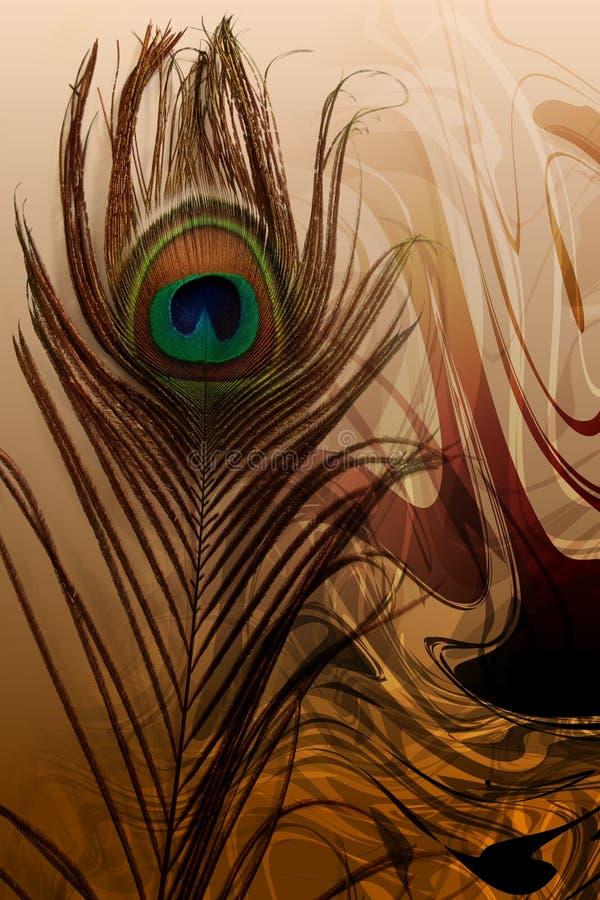 Påfågelfader med skuggad bakgrund för abstrakt begrepp brunt också vektor för coreldrawillustration stock illustrationer
