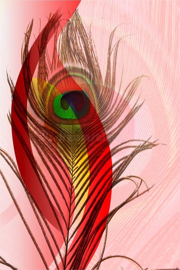 Påfågelfadern med abstrakt rött och vit skuggade bakgrund också vektor för coreldrawillustration vektor illustrationer
