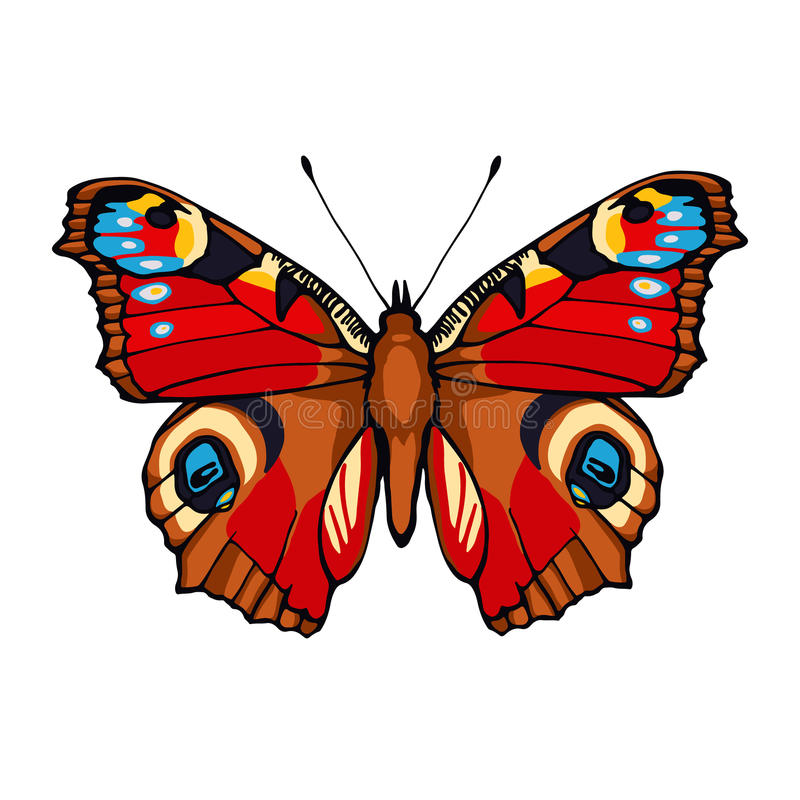 Påfågelfjäril. Hand dragen vektorillustration stock illustrationer