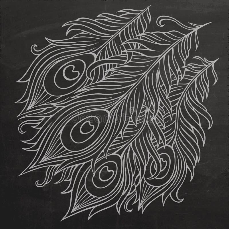 Påfågeln befjädrar svart tavlavektorn stock illustrationer