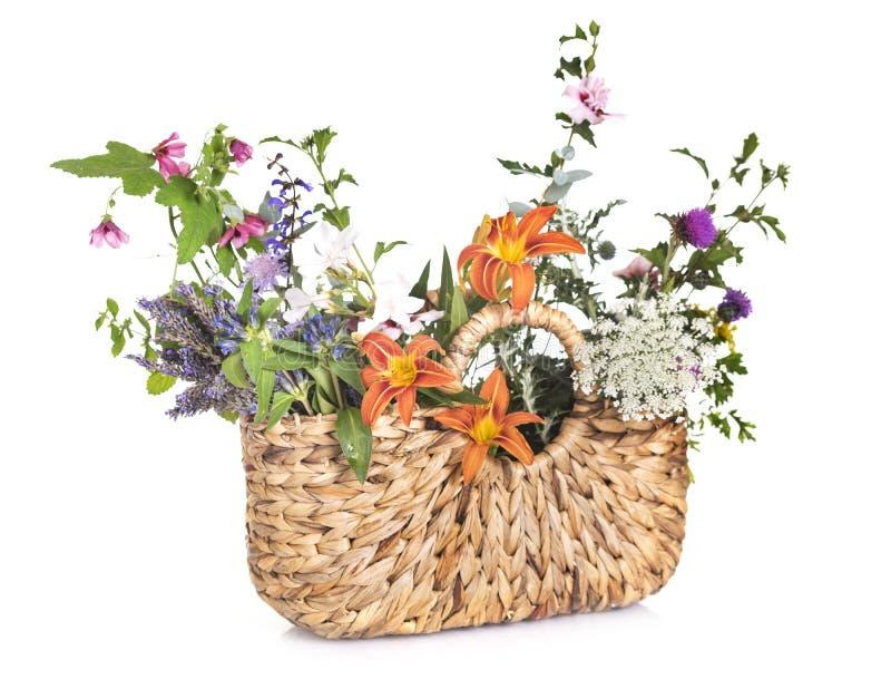 Påse och blommor royaltyfria foton