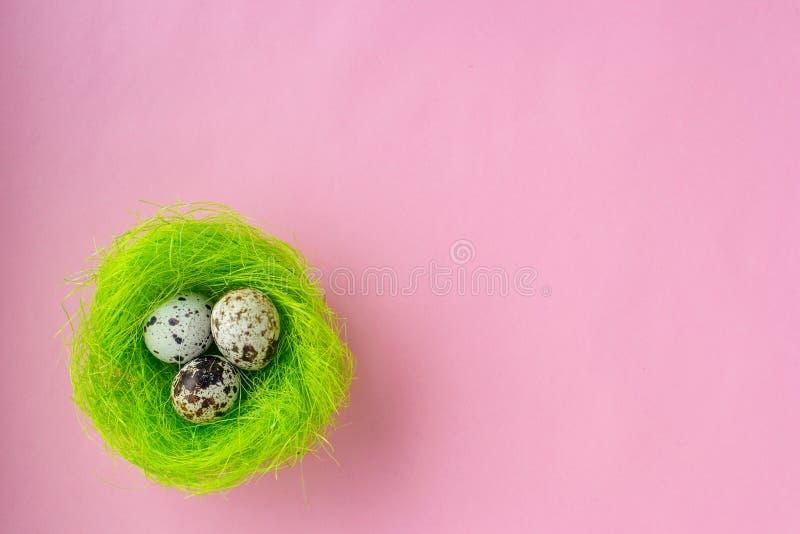 Påskägg i grönt rede på rosa bakgrund arkivbilder