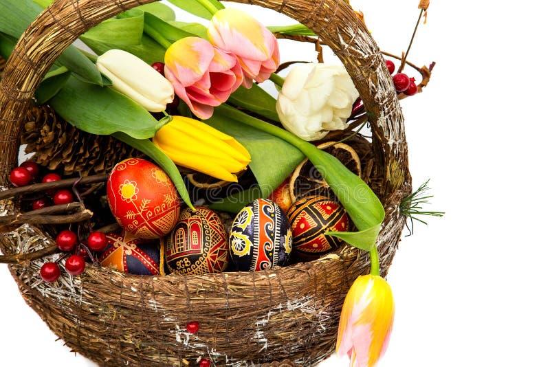 Påskägg i träkorg Våren blommar tulpan Korg med easter ägg på vit bakgrund royaltyfria bilder