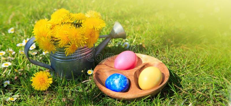 Påskägg och att bevattna kan med blommor bakgrund färgade vektorn för tulpan för formatet för easter ägg eps8 den röda royaltyfria bilder