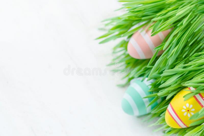 Påskägg och nytt grönt gräs på vit träbakgrund Till arkivbilder