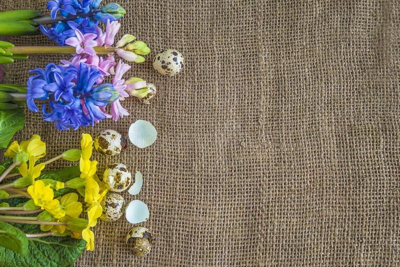 Påsk- eller vårbakgrund med vaktelägg och den ljusa våren blommar arkivfoton