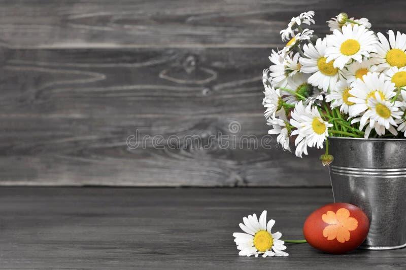 Påskbakgrund med påskägget och tusenskönor royaltyfri fotografi
