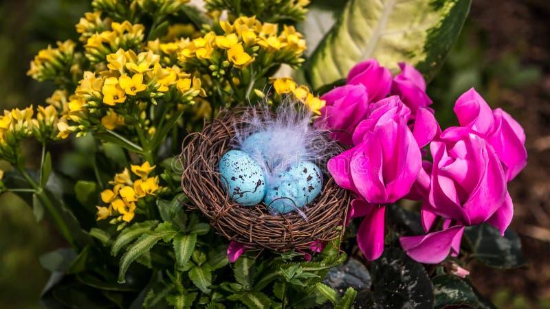 Påsken blommar med ägg royaltyfria bilder