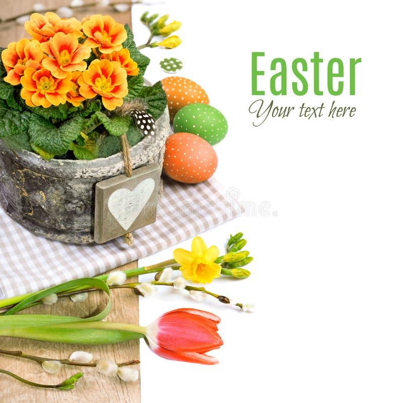 Påskgräns med primulan, vårblommor och naturlig decorati royaltyfri fotografi