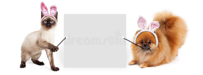 Påskhund och Cat Holding Up Banner arkivbild