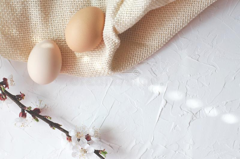 Påsksammansättning av kurt ägg och trädris med blomning royaltyfri foto