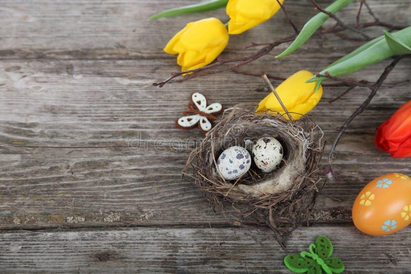Påskstilleben med ägg i redet arkivfoto