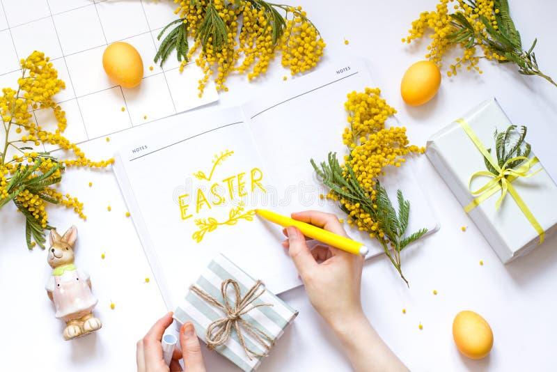 Påskvårlägenheten lägger med mimosablommor, en anteckningsbok och en kanin Kvinnans hand skriver text i notepad royaltyfria foton
