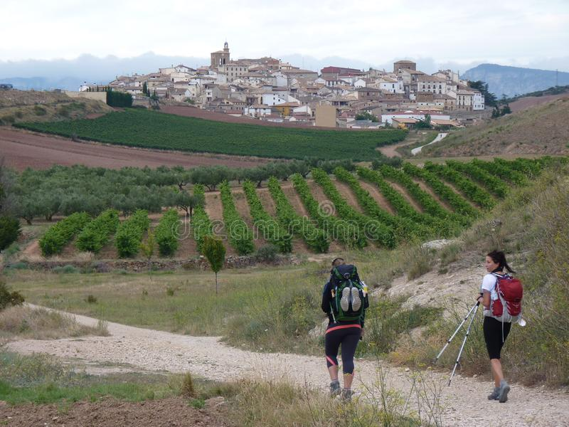 Pèlerins le long de la route de St James Les gens marchant sur Camino De Santiago image libre de droits