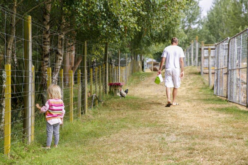 Père avec la fille à la ferme Quelque part en Nouvelle Zélande images stock