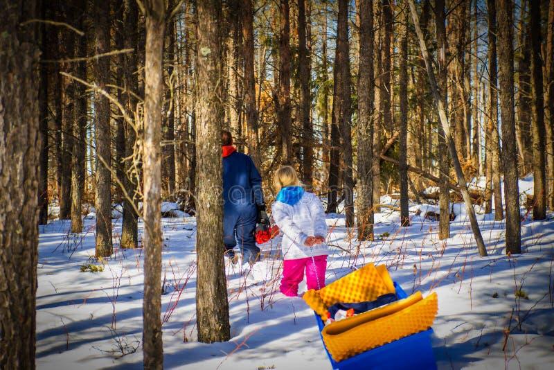 Père et fille trimardant par une forêt photo stock
