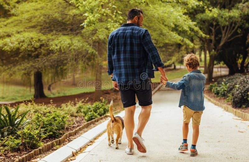 Père et fils marchant avec un chien en parc photographie stock libre de droits