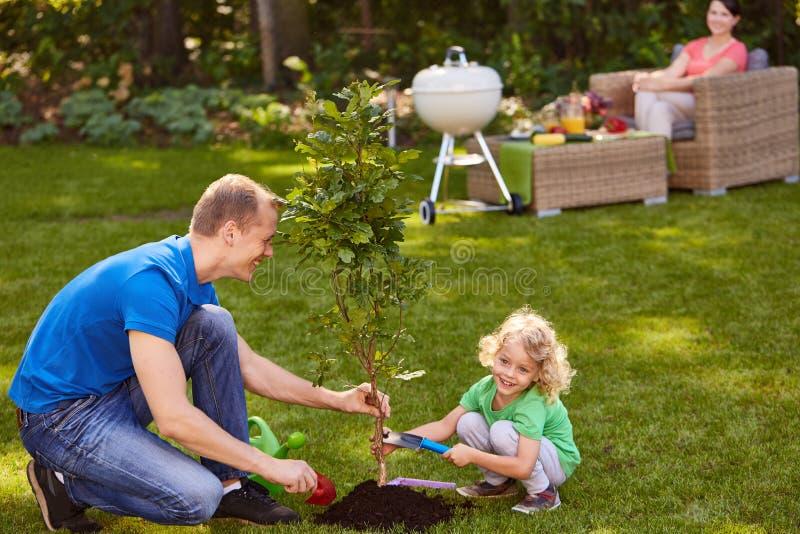 Père et fils plantant l'arbre photo stock