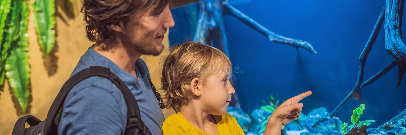Père et fils regardant des poissons dans une BANNIÈRE d'aquarium de tunnel, LONG FORMAT photos stock