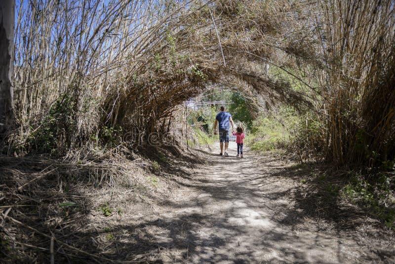 Père et petite fille marchant sur un chemin dans un marécage image stock