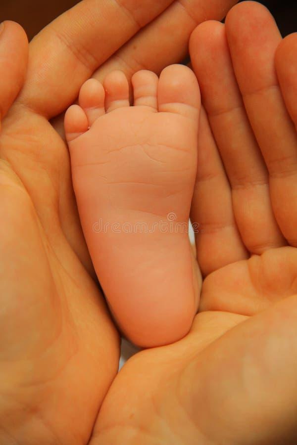 Pé do bebê foto de stock royalty free