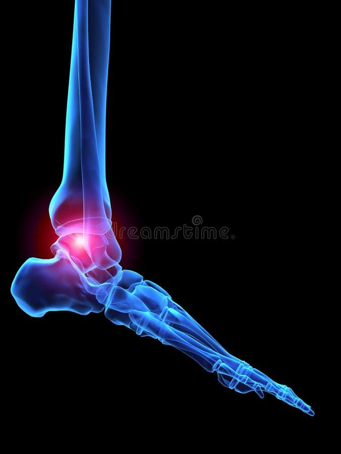 Pé humano do raio X ilustração royalty free
