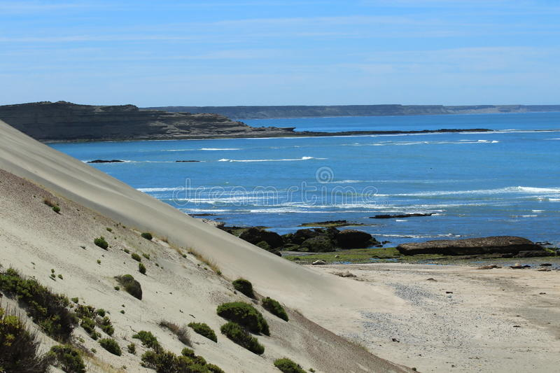 Download Péninsule De Valdes - Argentine Image stock - Image du atlantique, sauvage: 56480833