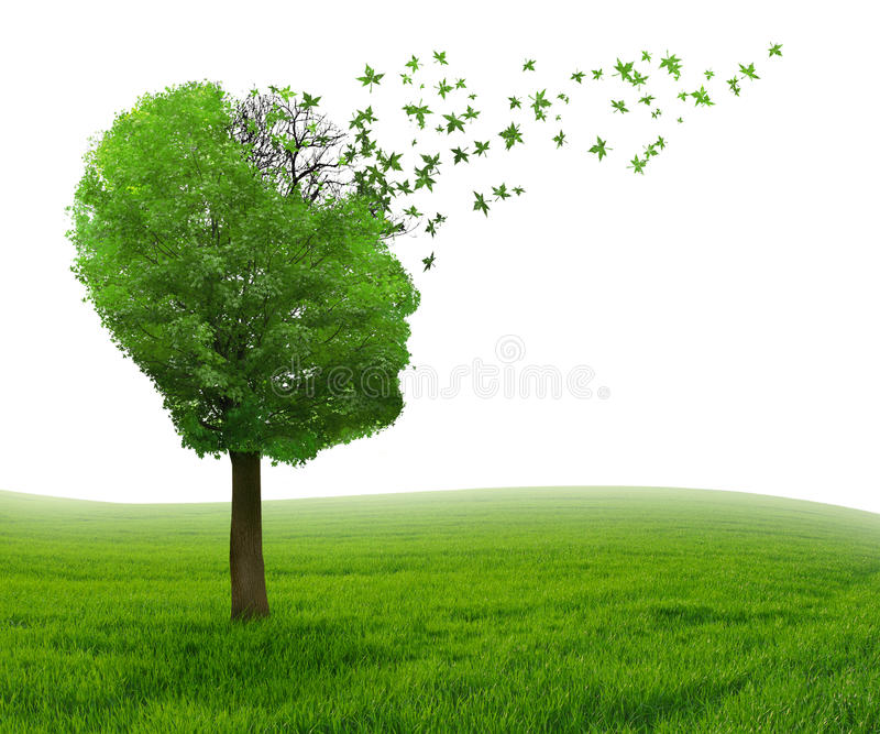 Pérdida de memoria de la enfermedad de cerebro debido a la enfermedad de Alzheimer de la demencia fotografía de archivo libre de regalías