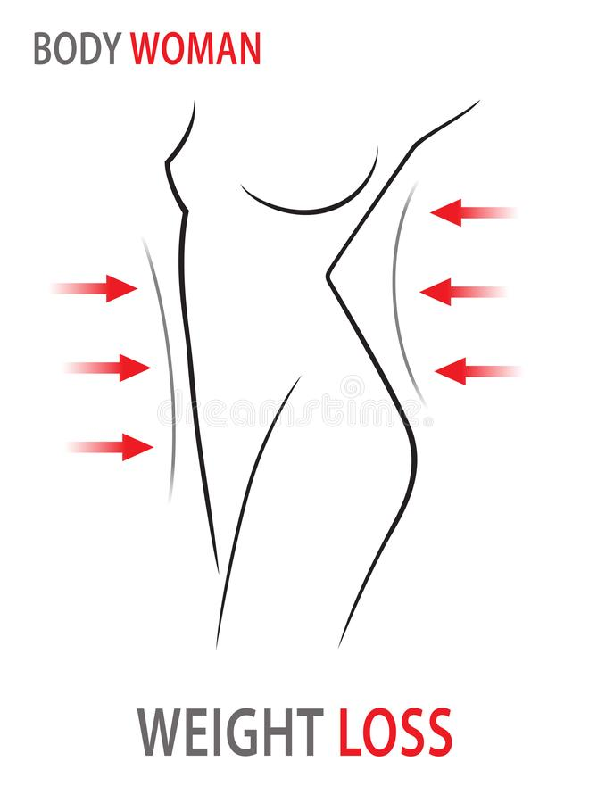 Pérdida de peso Cuerpo de la mujer, dieta de la cintura Ilustración del vector ilustración del vector