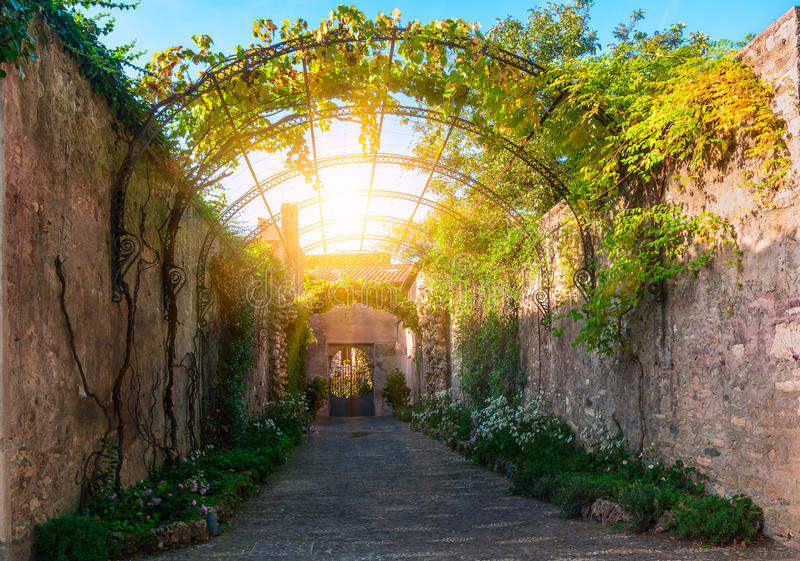 Pérgola con la uva en el parque del chalet d Este en Tivoli foto de archivo