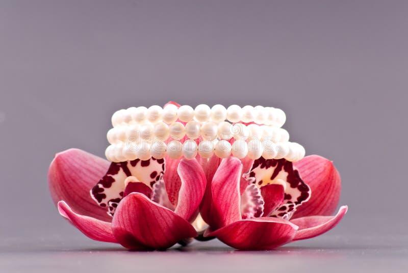 Pérolas e orquídeas fotos de stock