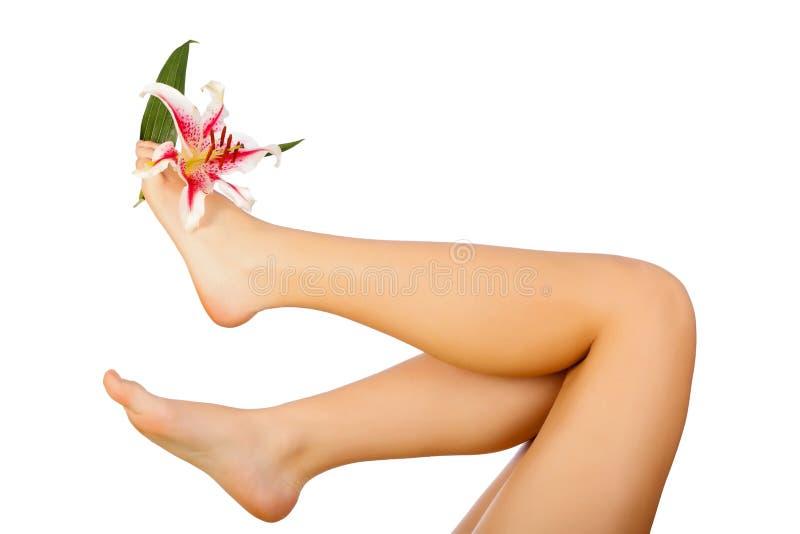 Download Lírio e pés imagem de stock. Imagem de beleza, levantado - 29833723