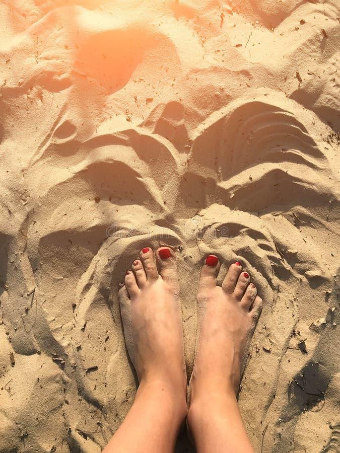 Pés bronzeados mulher na praia da areia conceito do curso Pés felizes no paraíso tropical fotos de stock royalty free