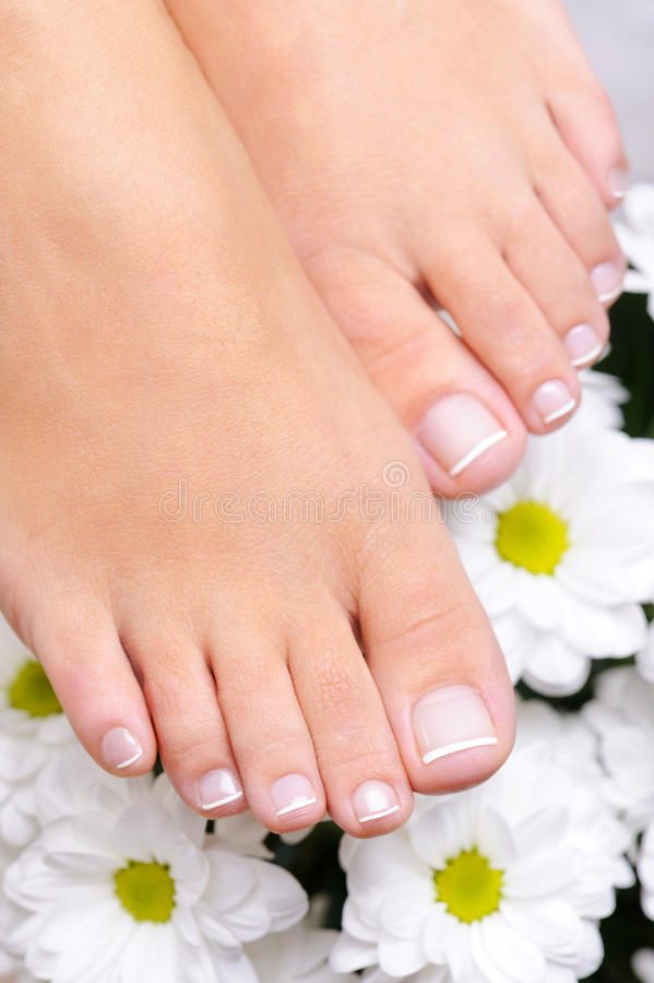 Pés com o pedicure e as flores franceses imagem de stock