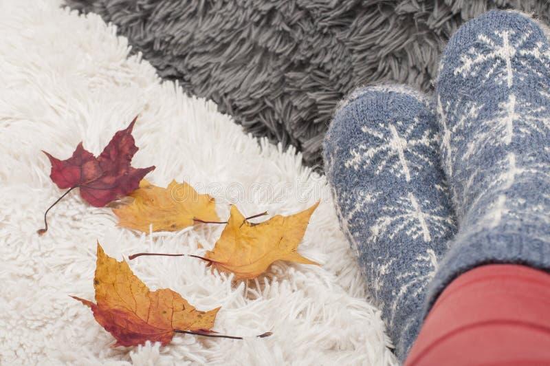 Pés da mulher em peúgas feitas malha com flocos de neve e as folhas de outono coloridas imagem de stock royalty free